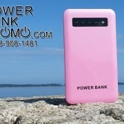 Power Bank Genuine portable battery chargers